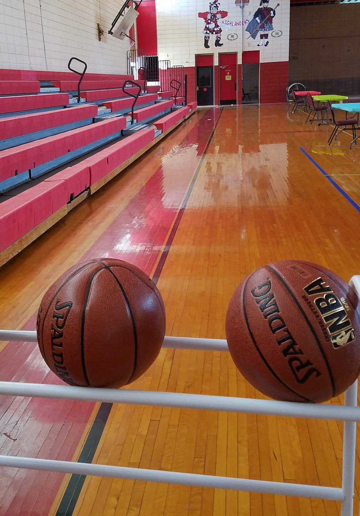 Gym - view of two basketballs in rack